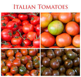 Collage of Italian tomatoes Stock Image