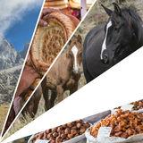 Collage of Kyrgyzstan images - travel background (my photos) Stock Photos