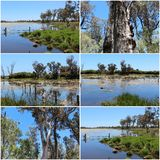 Collage of the lake at Malbup in Tuart National Park  near Busselton West Australia. Royalty Free Stock Image
