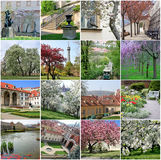 Collage of landmarks in spring Prague Royalty Free Stock Photography