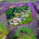 Collage of lavender in front of the abbaye de Senanque in Provence Royalty Free Stock Photography