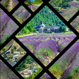 Collage of lavender in front of the abbaye de Senanque in Provence Stock Photo