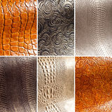 Collage: leather Royalty Free Stock Images