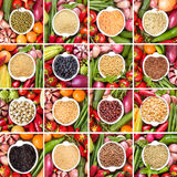 Collage of legumes and cereals Stock Photo
