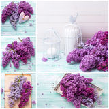 Collage  with  lilac flowers on wooden background Stock Images