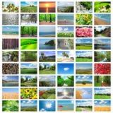 collage många foto royaltyfri foto