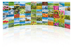 The collage of many nature photos Royalty Free Stock Photo