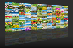 The collage of many nature photos Royalty Free Stock Images