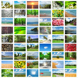 Collage of many  photos. Collage of many nature photos Royalty Free Stock Photo