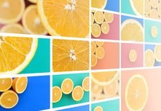 A collage of many pictures with juicy oranges. Set of images wit royalty free stock photography