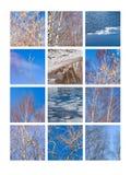 Collage mars Photographie stock