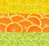 Collage med citrusfrukt av limefrukt-, citron- och apelsinskivor royaltyfri fotografi