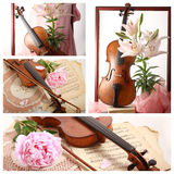 Collage med den gamla fiolen och blomman Arkivfoto