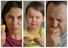 Collage med familjen som äter citronen och gör enfaldiga framsidor arkivbild