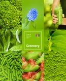 Collage med grön färg royaltyfri fotografi