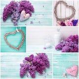 Collage med lilablommor och dekorativa hjärtor arkivbilder