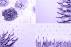 Collage med ultraviolet tonade bilder Pantone färg av jarösten Royaltyfri Bild