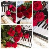 Collage mit Akkordeon und roten Rosen Stockbild