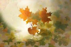 Collage mit einem Glas mit Herbstahornblättern Stockfotografie