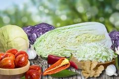Collage mit Gemüse Lizenzfreies Stockfoto