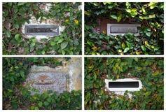 Collage mit Postboxes mit Efeu in Brasilien Stockfotografie