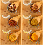 Collage of mixture spice in a wooden spoon Royalty Free Stock Photo