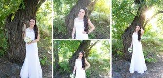 Collage 4 mooie huwelijksfoto Stock Foto's