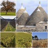 Collage Murgia - Apulia- Italië Stock Fotografie