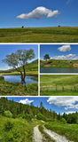 Collage -  nature Stock Photos
