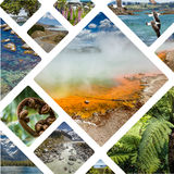 Collage of New Zealand images - travel background (my photos) Stock Images