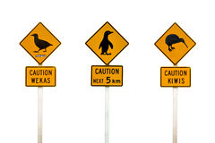 Collage of New Zealand penguin, weka and kiwis road sign royalty free stock image