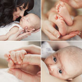Collage of a newborn baby in mother's arms. Collage - A young mother admiring her sleeping baby, baby sucks mother's breast, carefully examining all around, her Stock Photos