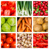 Collage of nine fresh vegetables stock images