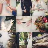 Collage of nine wedding photos Royalty Free Stock Photo
