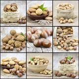 Collage with nuts Royalty Free Stock Image