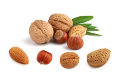 Collage of nuts on a white background Stock Images