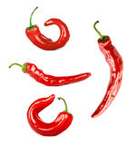 Collage Of Chili Pepper Isolated Royalty Free Stock Images