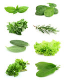 Collage Of Green And Juice Spice Stock Images
