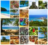Collage om Jamaica - karibisk ö royaltyfri foto