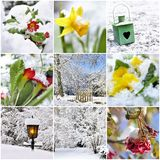 Collage On The Subject Of Winter Garden Stock Images