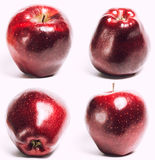 Collage with one red apple isolated on white Stock Photos