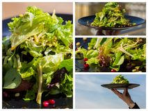 Collage. organic salad with vegetables and greens at restaurant Royalty Free Stock Image