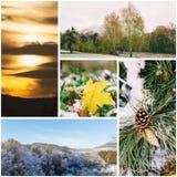 Collage på hösten för tema på senare: första insnöat parkera, den stupade lönnlövet, aftonhimlen, snöig kullar och skogar Arkivbilder