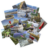 Collage of paddling pictures from Colorado Stock Photos
