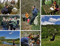 Collage - peope actif en nature Image libre de droits