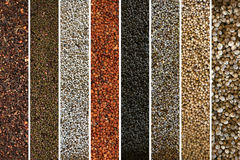 A collage of peppercorn varieties and spices Royalty Free Stock Photography