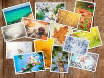 A collage of photographs is the seasons. Selective focus royalty free stock image