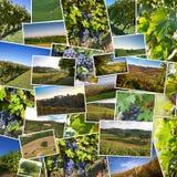 Collage of photos of Astigiano, Piedmont, Italy. Royalty Free Stock Photo
