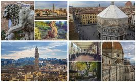 Collage of photos of attractions Florence Italy Stock Images