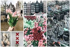 Collage of different photos from Amsterdam Stock Photography